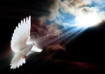 And the Dove brings peace and a serenity...